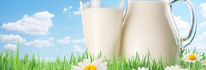 lapte-min